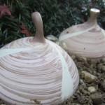 中庭に埋められた 渦巻き陶器