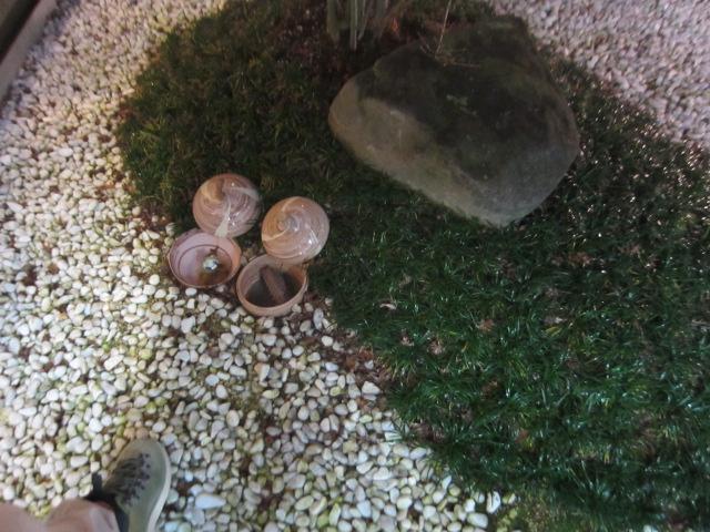 秘密の中庭