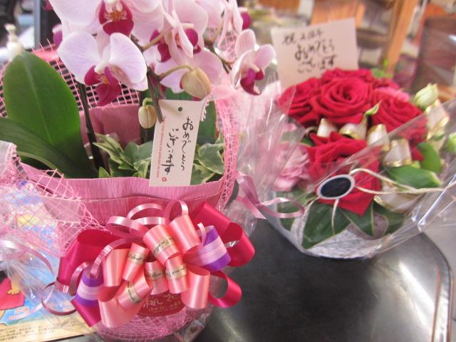 香川 イベント