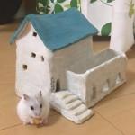 陶器で手作りハムのハウス