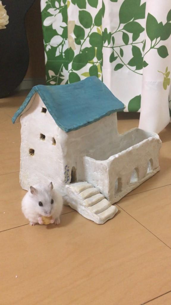 陶芸体験 ハムの家 (2)