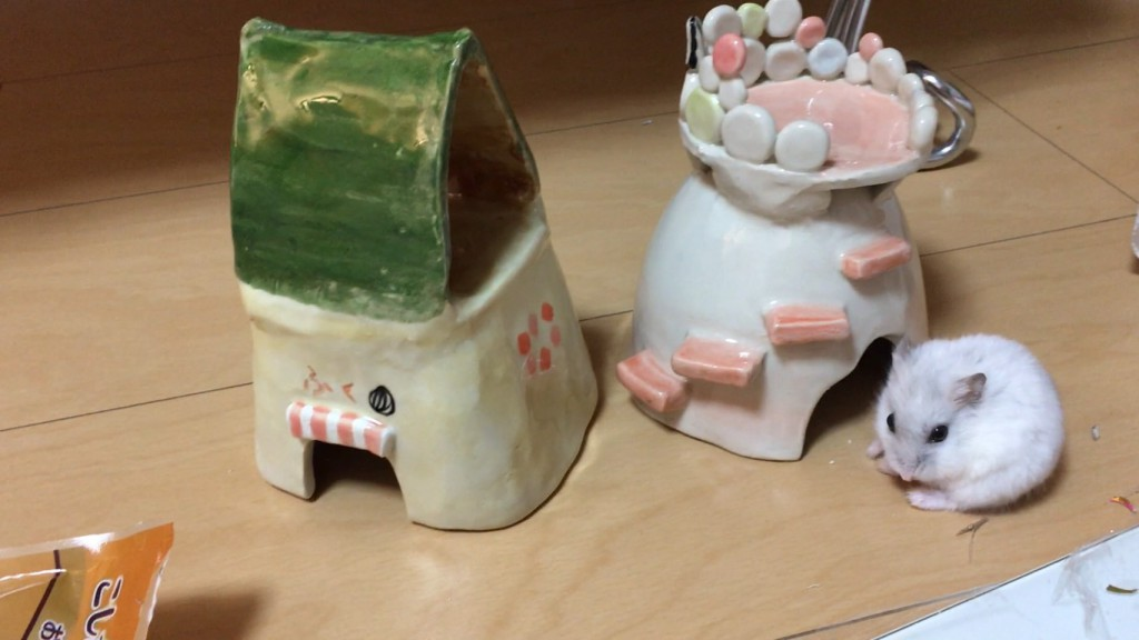 陶芸体験 ハムの家 (1)